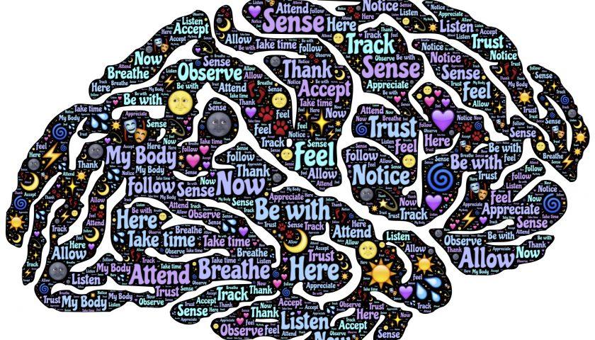 Neuromarketing: hjerneforskning kan gøre dig til en bedre sælger